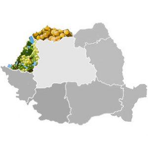 Crișana-Maramureș